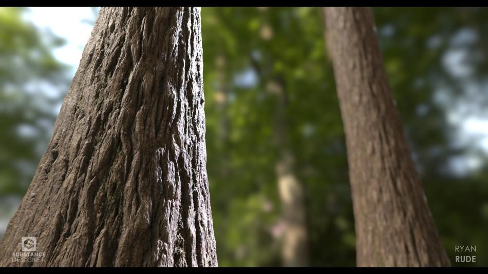 ryan-rude-tree-bark-02