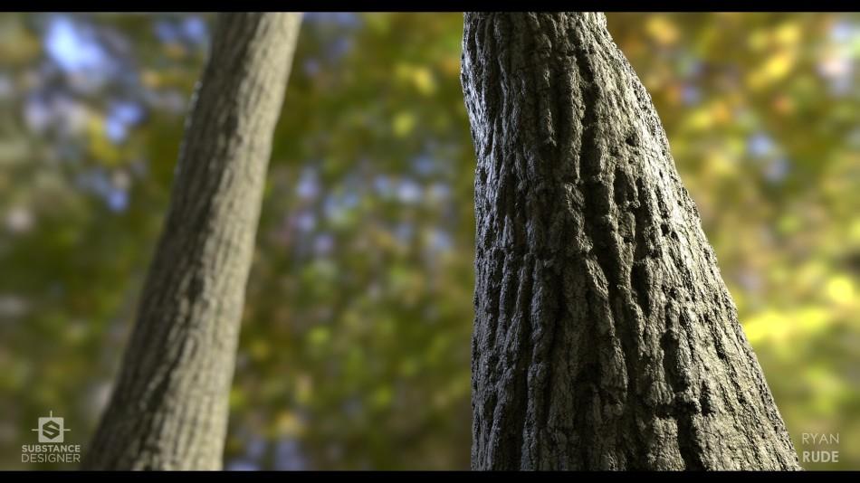 ryan-rude-tree-bark2-02